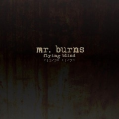 mrburns_flyingblind